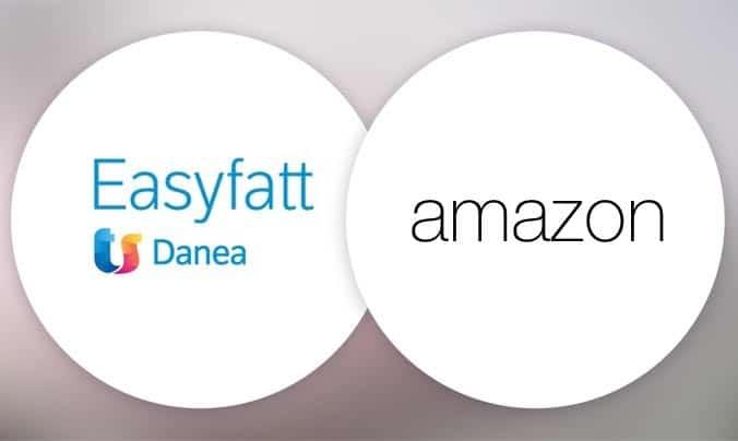 logo easyfatt e scritta amazon - progetto di integrazione e sviluppo batch