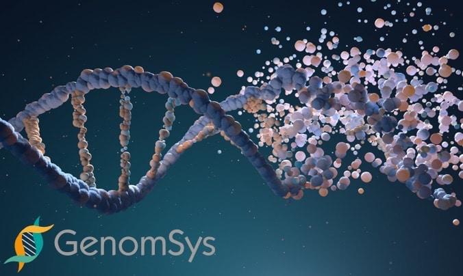 Immagine DNA